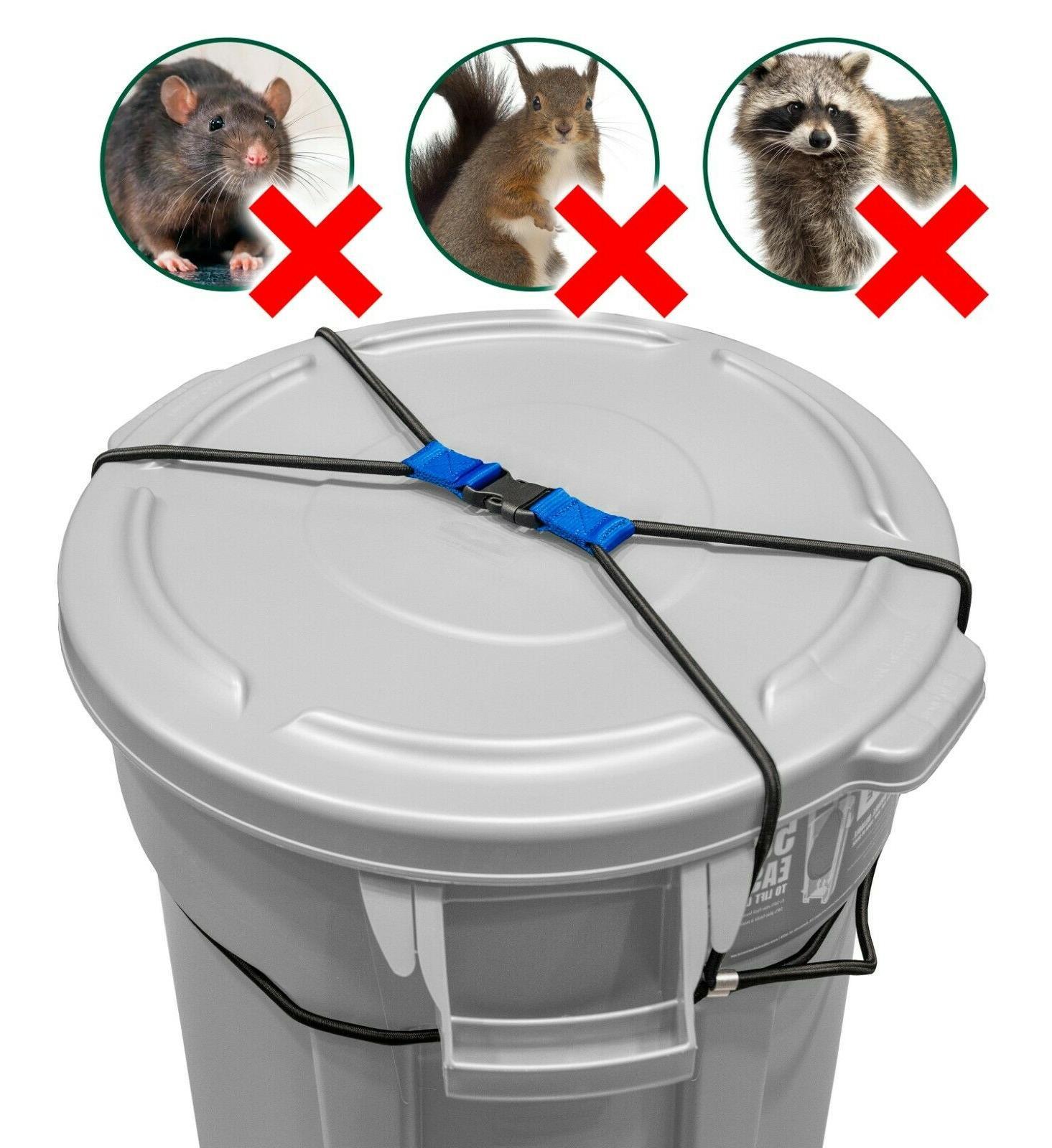 Animals/Raccoons Bungee Duty