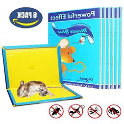 Mouse Glue Trap, Rat Glue Traps, Glue Traps for mice, Super