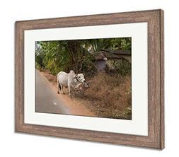 Ashley Framed Prints White Buffalo In Goa India, Wall Art Ho